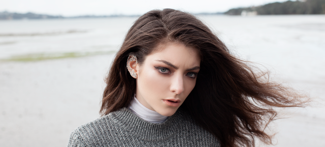 Lorde long form essay